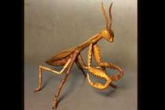 Hardwood Praying Mantis